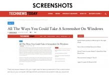 Taking Screenshots on Windows