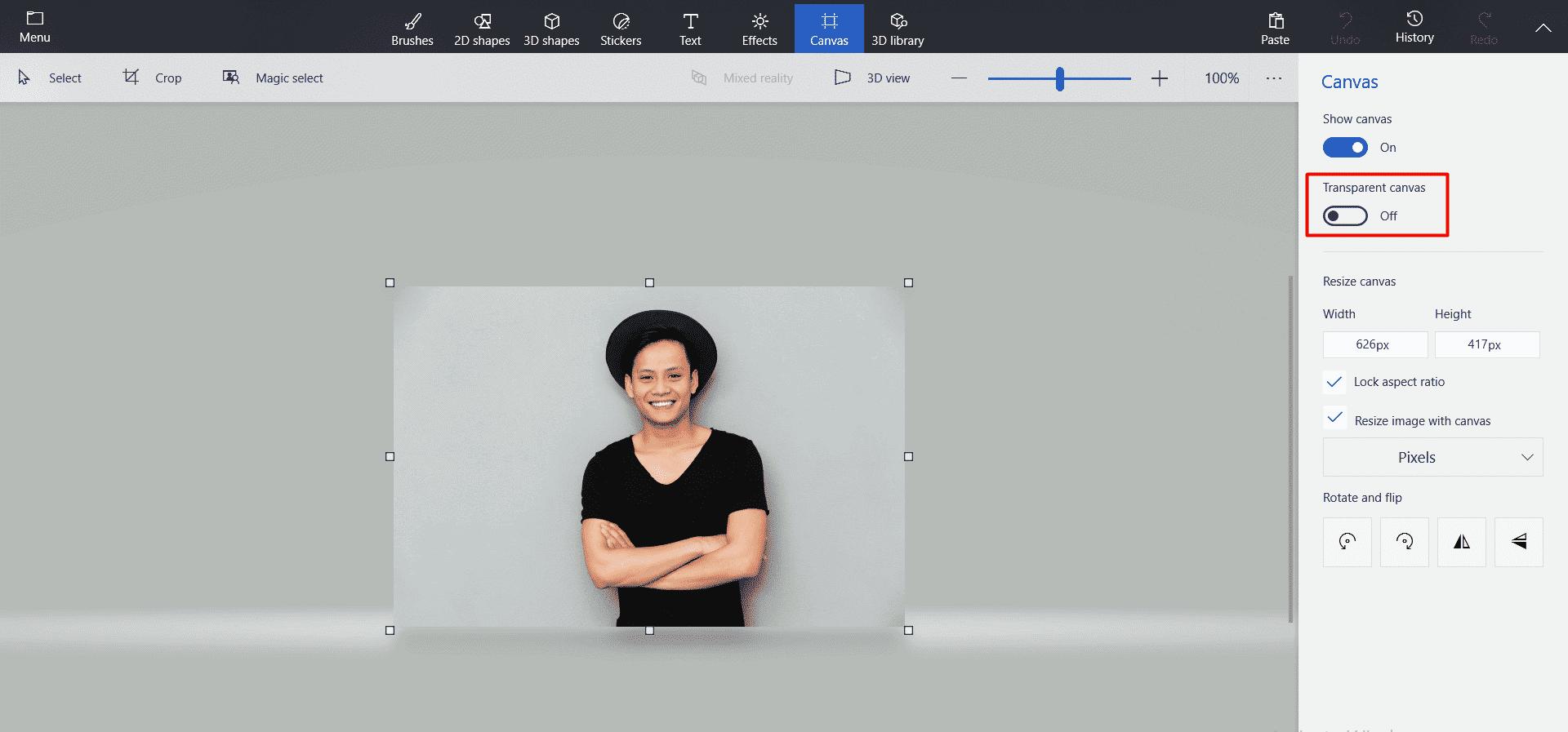 transparent canvas