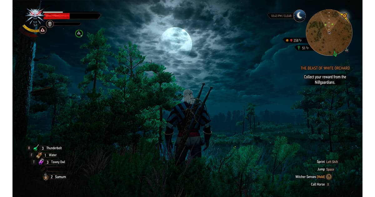 the witcher 3 hud