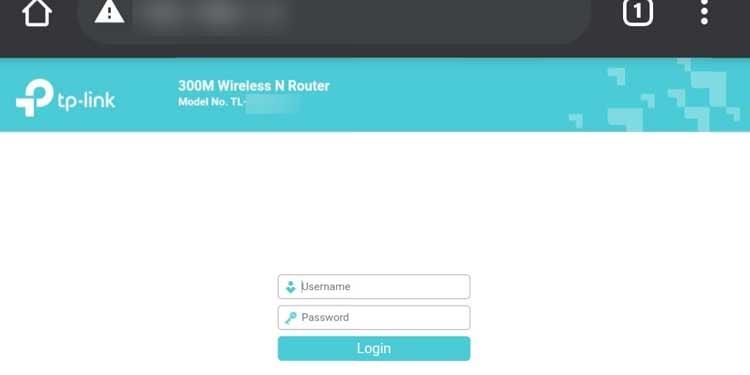 IP address via Browser