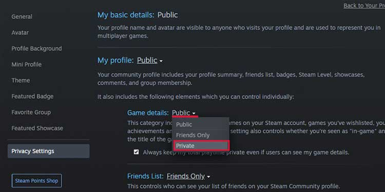Privacy Settings on Steam