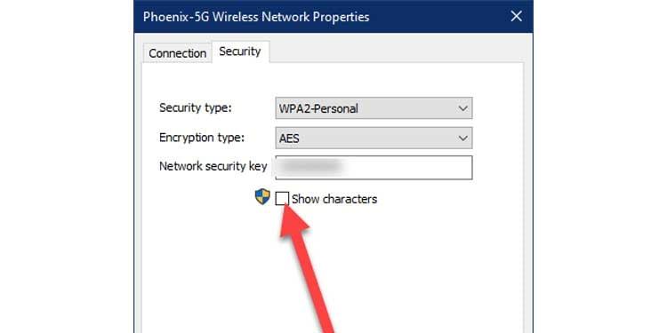 Wireless Network Properties Show Password