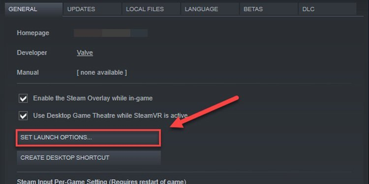 set ark games launch options