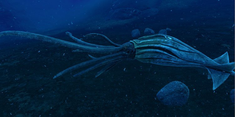 tame tusoteuthis in ark survival