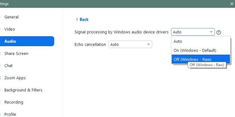 zoom-advanced-Audio-option