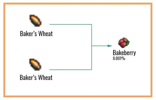 Bakeberry Chart