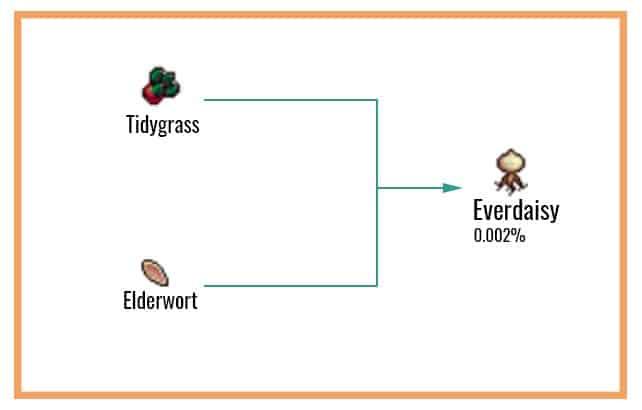 Everdaisy Chart