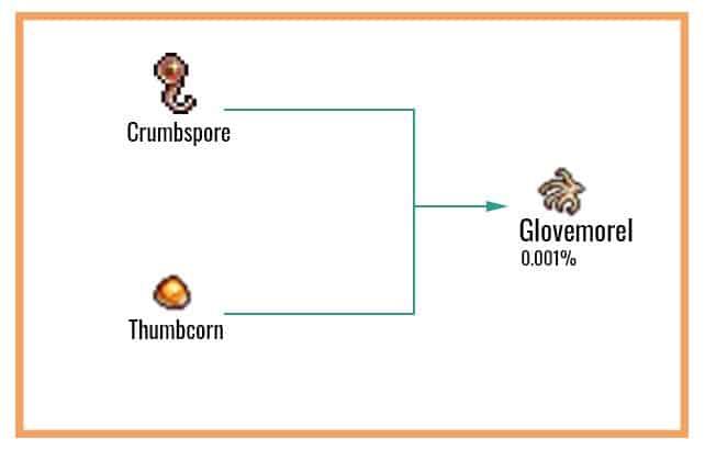 Glovemorel Chart