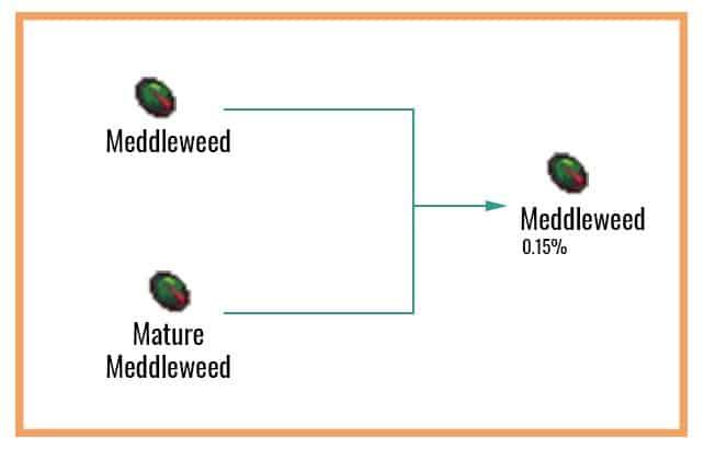 Meddleweed Chart