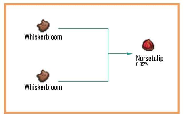 Nursetulip Chart