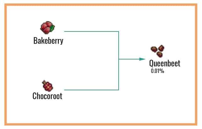 Queenbeet Chart