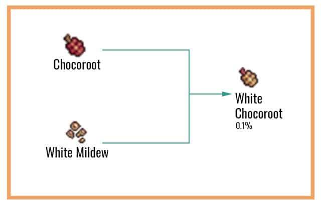 White Chocoroot Chart