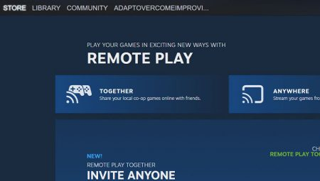 Steam Remote Play Not Working
